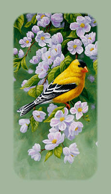 Birds Painting - Goldfinch Iphone Case V2 by Crista Forest