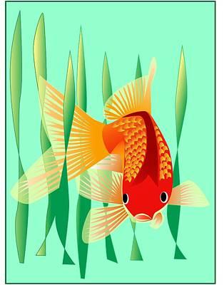 Goldfish Drawing - Goldfish by Fred Croydon