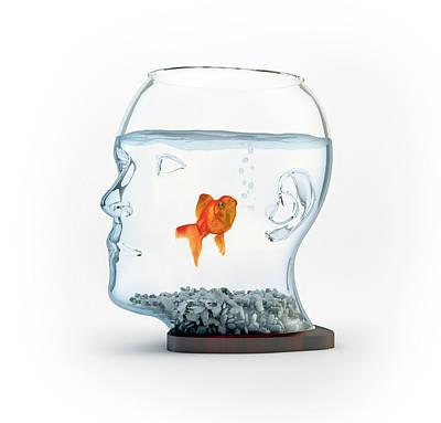 Goldfish Photograph - Goldfish In A Bowl by Andrzej Wojcicki