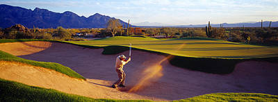 Golden Afternoon Photograph - Golf Course Tucson Az Usa by Panoramic Images