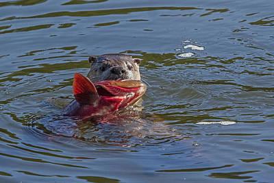 Gone Fishin' Print by Sandy Sisti