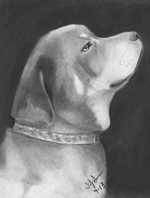 Good Boy Original by Toby Smith