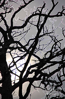 Goth Tree Print by First Star Art