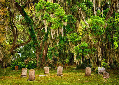 Gould's Cemetery Print by Priscilla Burgers