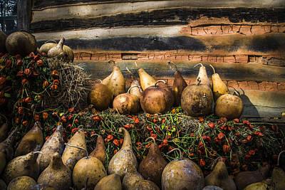 Gourds Print by Debra and Dave Vanderlaan