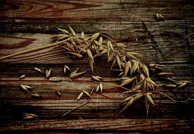 Grain Print by Odd Jeppesen