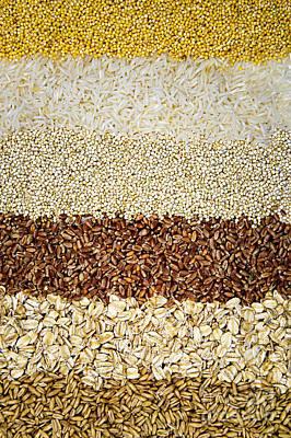 Cereal Photograph - Grains by Elena Elisseeva
