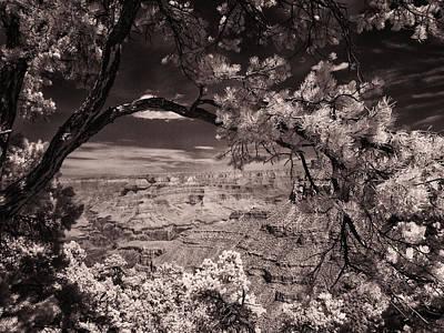 Grand Canyon Print by Marc Malin