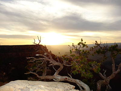 Pause Photograph - Grand Canyon Sunset by Dan Sproul