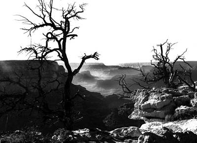 Grand Canyon Digital Art - Grand Nature by Camille Lopez