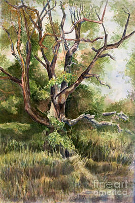 Grand Old Tree Print by Janet Felts