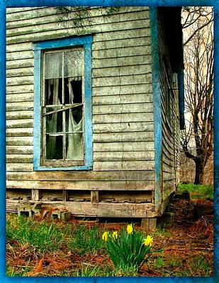 Abandoned House Photograph - Grandma's Daffodyls by Julie Dant
