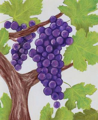 Grape Vine Print by Anastasiya Malakhova