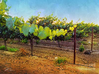 Vineyards Mixed Media - Grape Vine In The Vineyard by Shari Warren