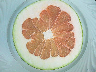Grapefruit Original by Lin Haring
