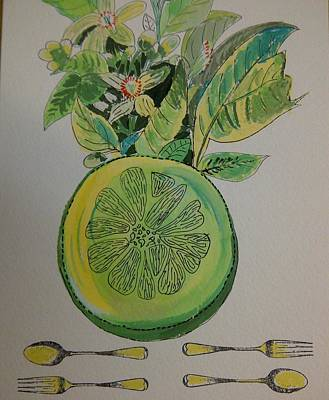 Grapefruit Drawing - Grapefruit by Olivier Calas