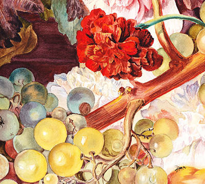 Grapes And Flowers From The Old Master Print by Irina Sztukowski