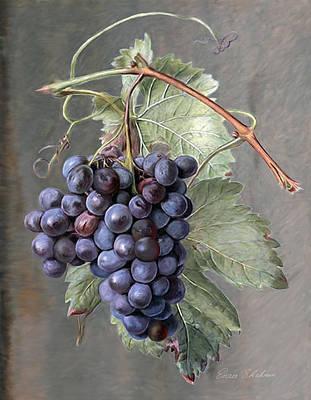 Grapes Print by Enzie Shahmiri