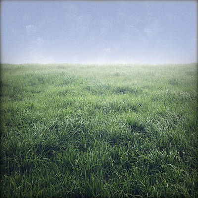 Grass Photograph - Grass And Sky  by Les Cunliffe