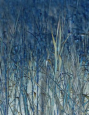 Grass Print by Theresa Tahara