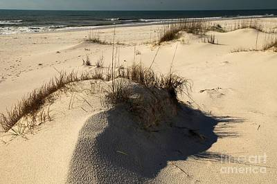 Grassy Dunes Print by Adam Jewell