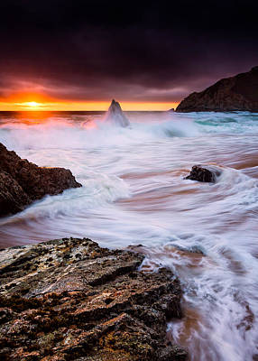 Gray Whale Cove Print by Alexis Birkill