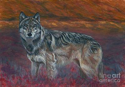 Endangered Wildlife Painting - Gray Wolf by Tom Blodgett Jr