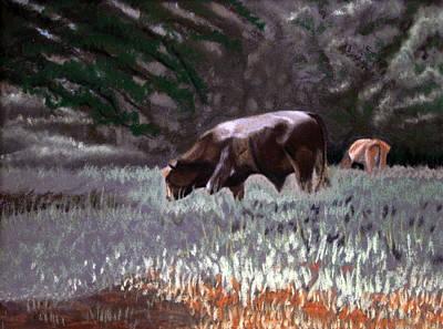 Grazing Bull Print by Tanya Provines