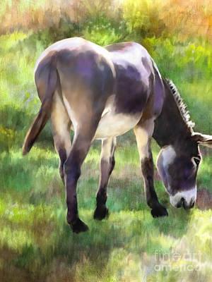 Donkey Mixed Media - Grazing by Ursula Freer