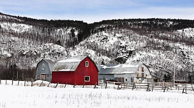 Red Barn In Winter Photograph - Great Canadian Red Barn In Winter by Peter v Quenter