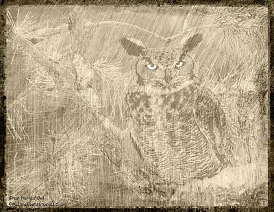 Great Horned Owl Scratchings Print by LeeAnn McLaneGoetz McLaneGoetzStudioLLCcom