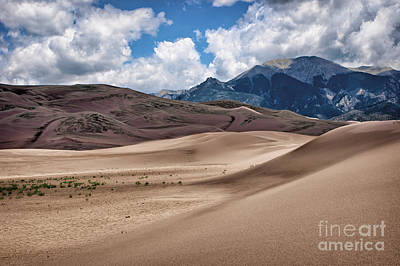 Great Sand Dunes National Preserve Photograph - Great Sand Dunes #6 by Nikolyn McDonald