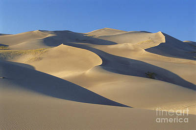 Great Sand Dunes National Park Print by Mark Newman