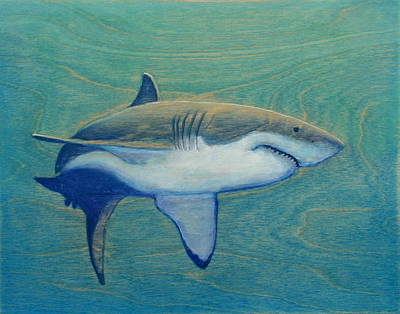 Great White Print by Nathan Ledyard