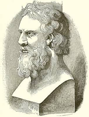 Ancient Drawing - Greek Bust Of Plato by English School
