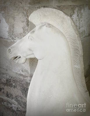 Greek Horse Sculpture Print by Lainie Wrightson