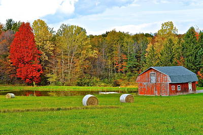 Mennonite Photograph - Green Acres by Frozen in Time Fine Art Photography