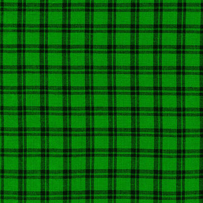 Green And Black  Plaid Cloth Background Print by Keith Webber Jr