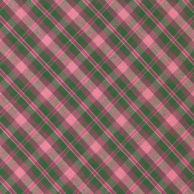Green And Pink Diagonal Plaid Pattern Textile Background Print by Keith Webber Jr