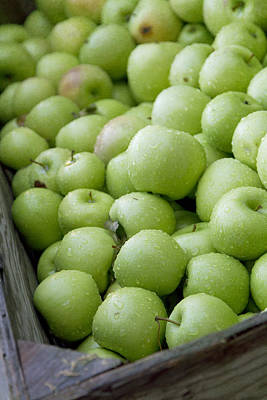 Green Apples Print by Rebecca Cozart