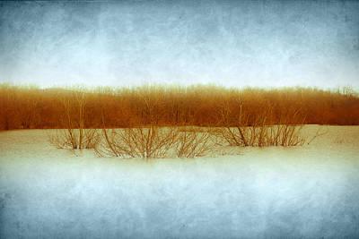 Virginia Photograph - Green Bottom Swamp by Shane Holsclaw