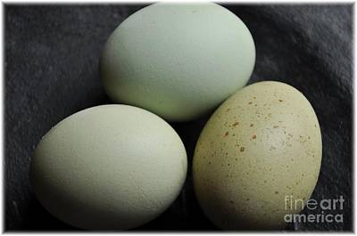 Green Eggs Print by Cheryl Baxter