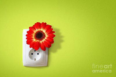 Plug Photograph - Green Electricity by Carlos Caetano