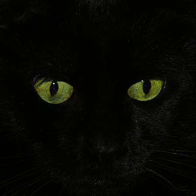 Green Eyes Print by Gothicolors Donna Snyder