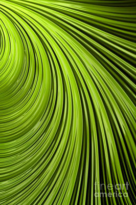 Mysterious Digital Art - Green Flow Abstract by John Edwards