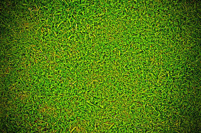 Turf Photograph - Green Grass Background by Chevy Fleet