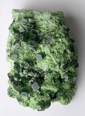 Green Grossular (garnet) In Matrix Print by Dorling Kindersley/uig