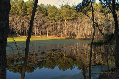 Nature Photograph - Green Lake Reflections by Paulette B Wright