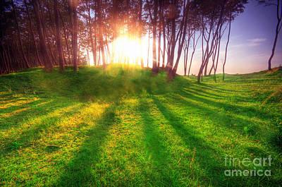 Autumn Landscape Photograph - Green Park At Sunset by Michal Bednarek