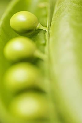Green Peas  Print by Vishwanath Bhat